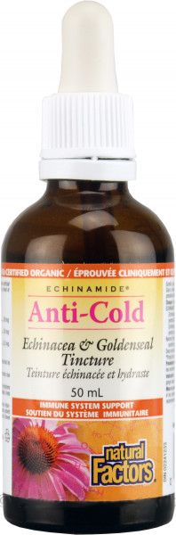 Natural Factors Echinamide Echinacea, 50 ml