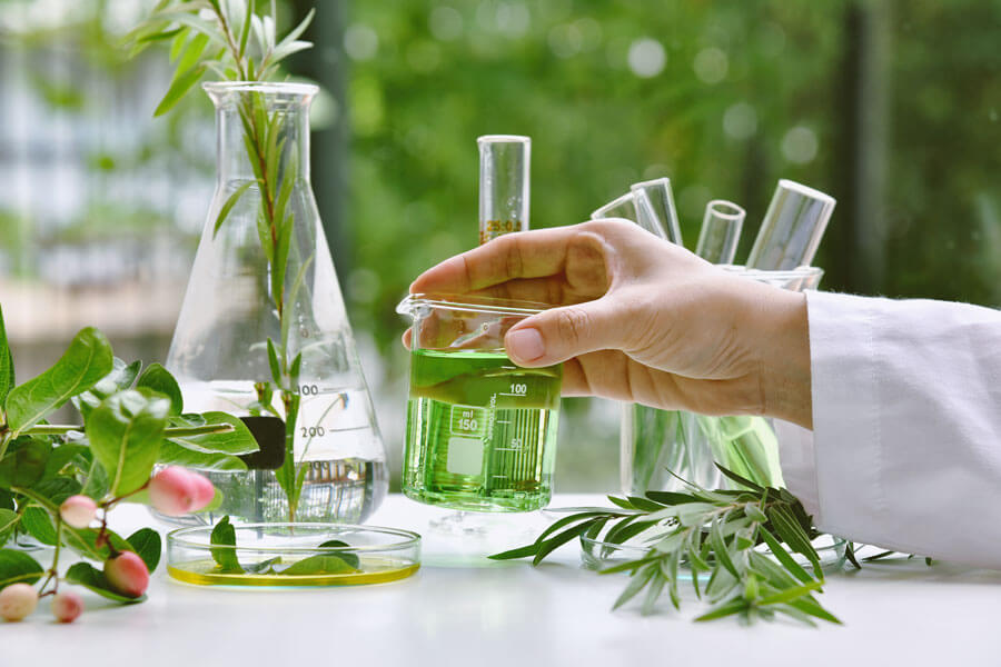 Paradise Herbs Scientists