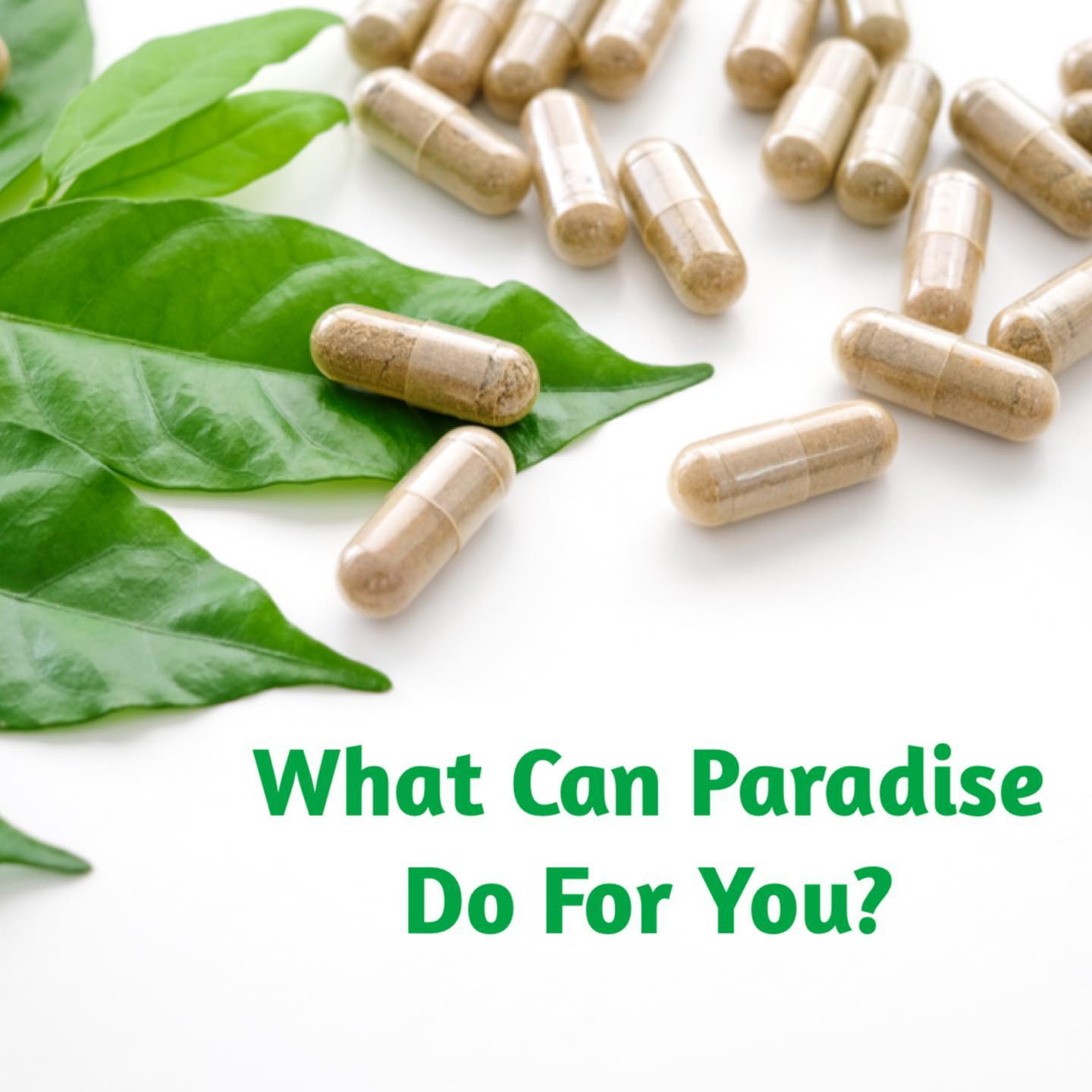 What Can Paradise Herbs Do For You?