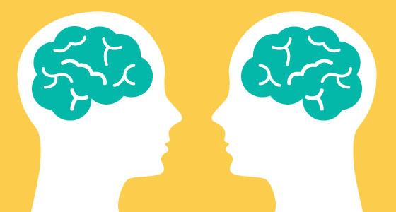 Nourish Your Brain