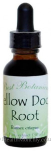 Dr Christopher's Best Botanicals Yellow Dock Root Extract