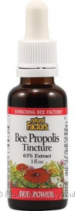 Natural Factors Bee Propolis Tincture