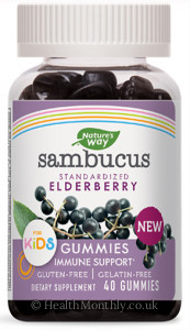 Nature's Way® Sambucus for Kids, Standardised Elderberry