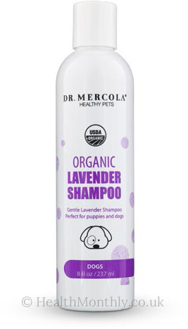 Dr. Mercola Healthy Pets, Organic Lavender Shampoo for Dogs