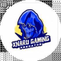 XNaru Gaming