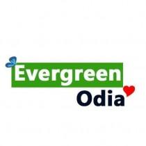Evergreen Odia