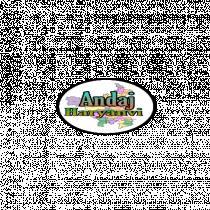 Andajharyanvi