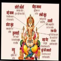my grate india