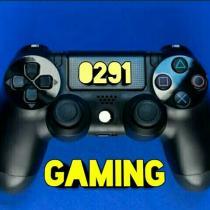 0291 gaming