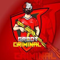GROOT CRIMINAL