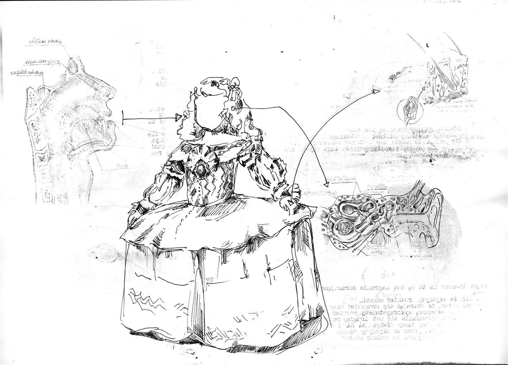 02 infantas anatomy art drawing
