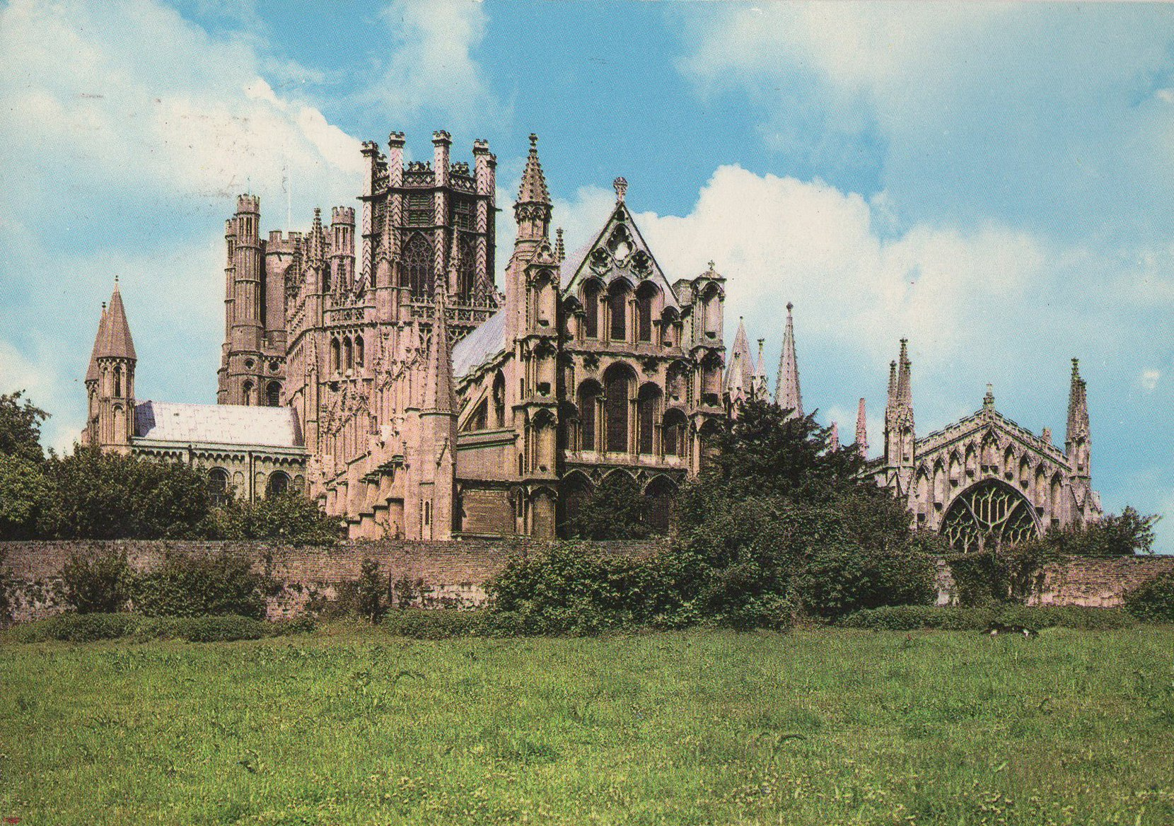 ely cathedral (england) postcards standard – printed card