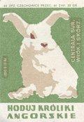 Etykieta 70: Hoduj króliki angorskie(1965)