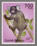 Callibella humilis, 2010 Guinea-Bissau Stamp