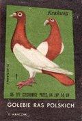 Etykieta 88: Gołębie ras Polskich (1965)
