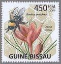Bombus paradoxus, Crocus vernus, 2009 Comoros Stamp