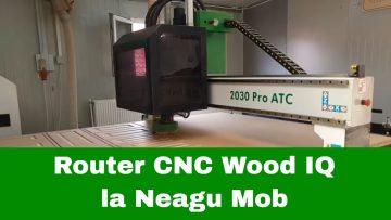 Neagu mob CNC Wood IQ