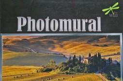 Photomural