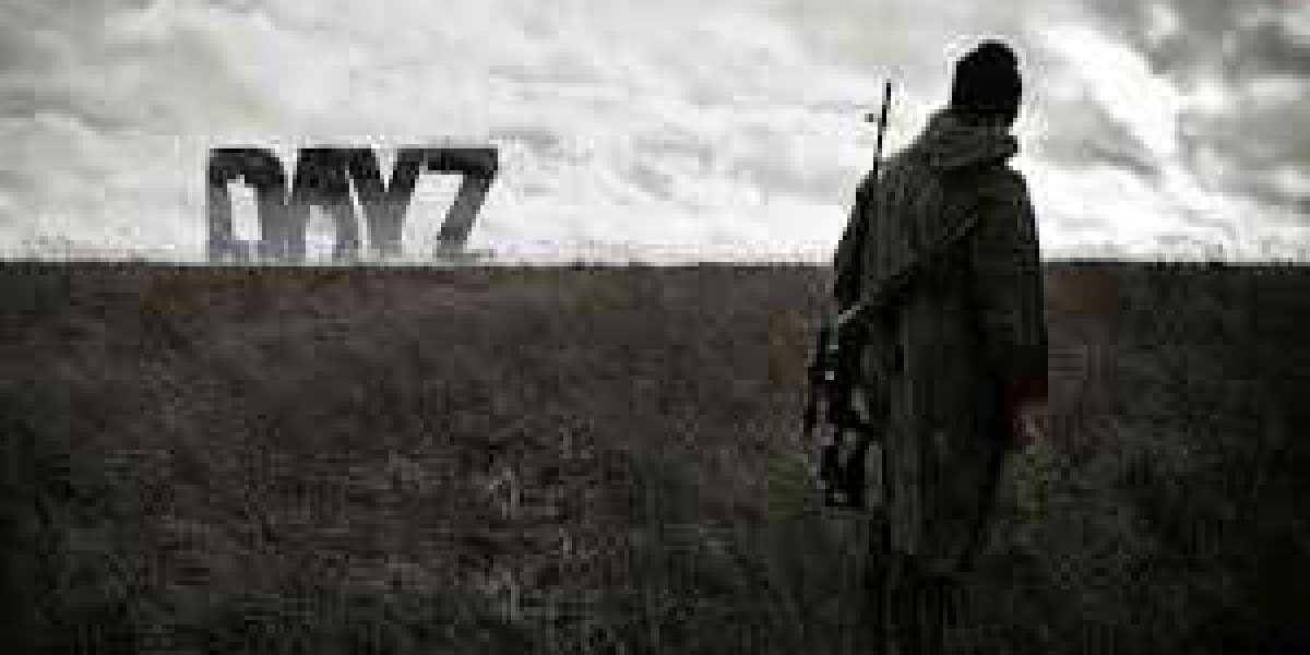 New Questions About Rent A DayZ Server