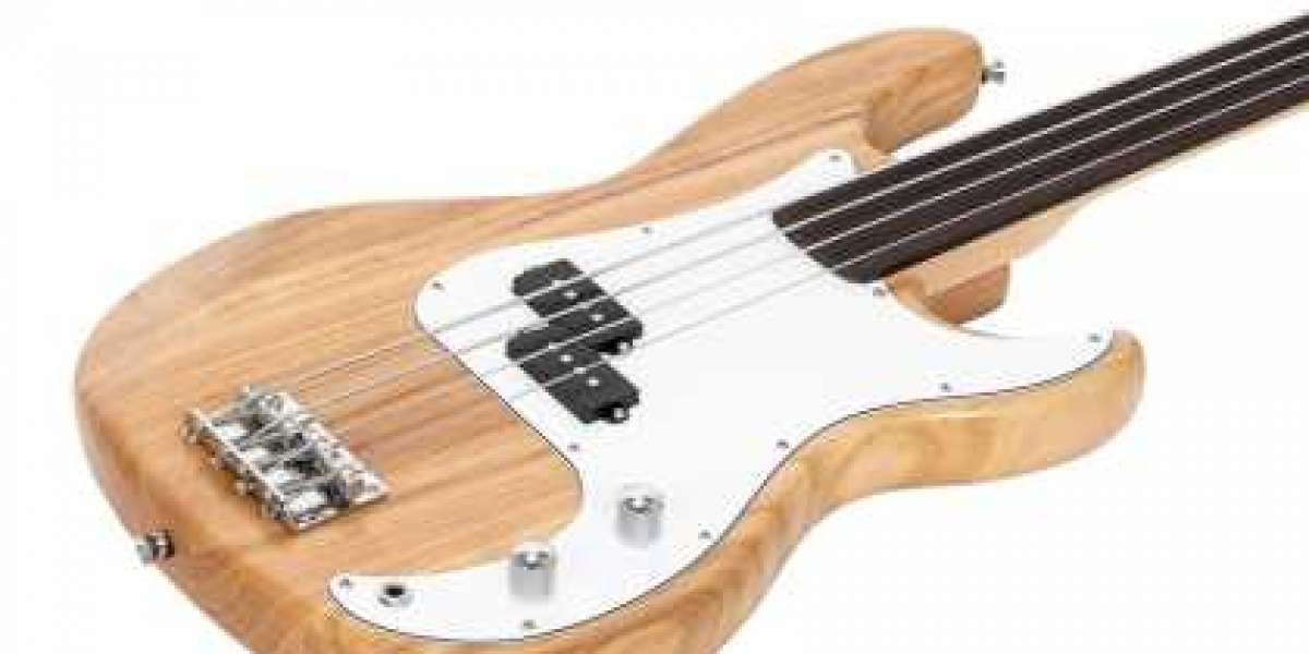 Electric bass guitar is a bass stringed instrument