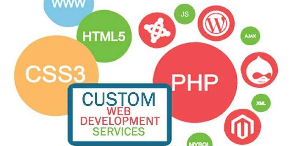 Top few ways Why You Should Go Custom Web Development.