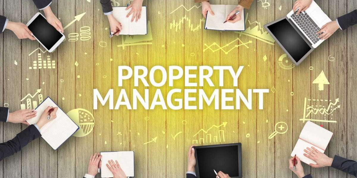 6 reasons you need the professional property manager