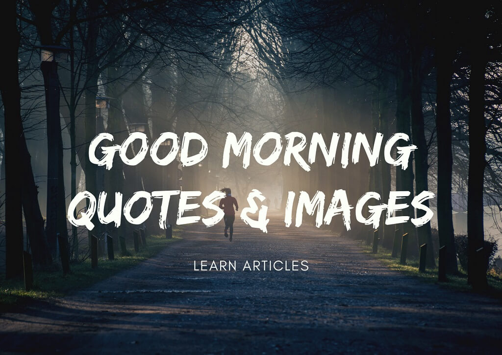 Good Morning Quotes and The Importance They Hold