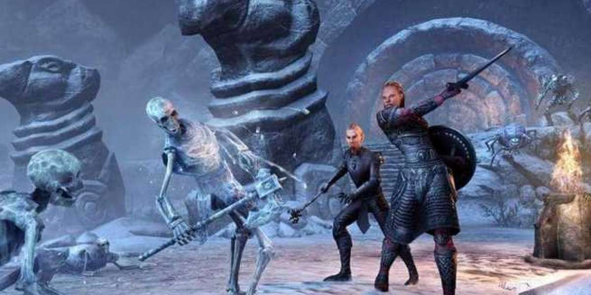 What should novice players pay attention to after entering Elder Scrolls Online