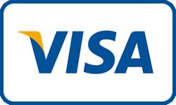 visacard icon