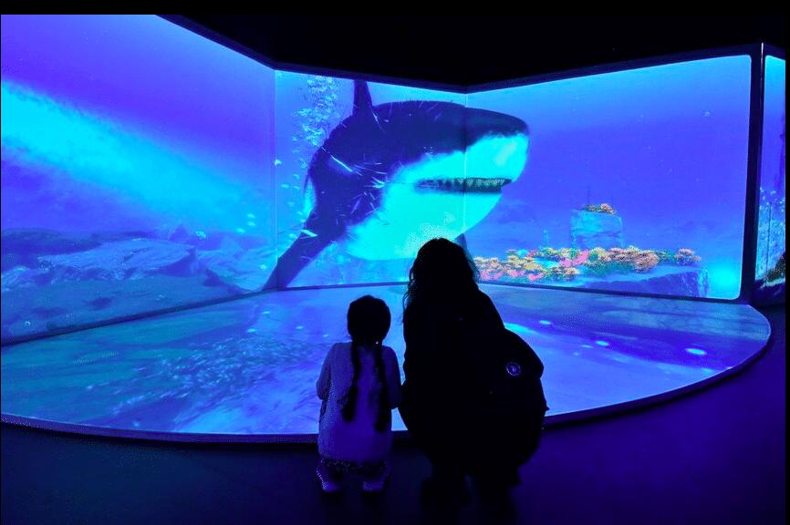Jurassic Ocean