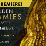 'Golden Mummies of Egypt' exhibition launches!