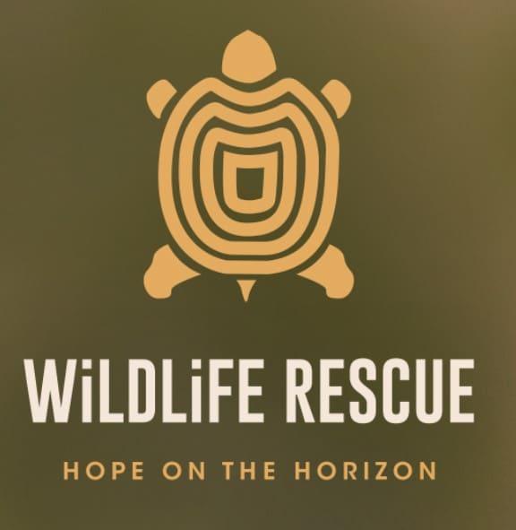 Wildlife Rescue – Hope on the horizon