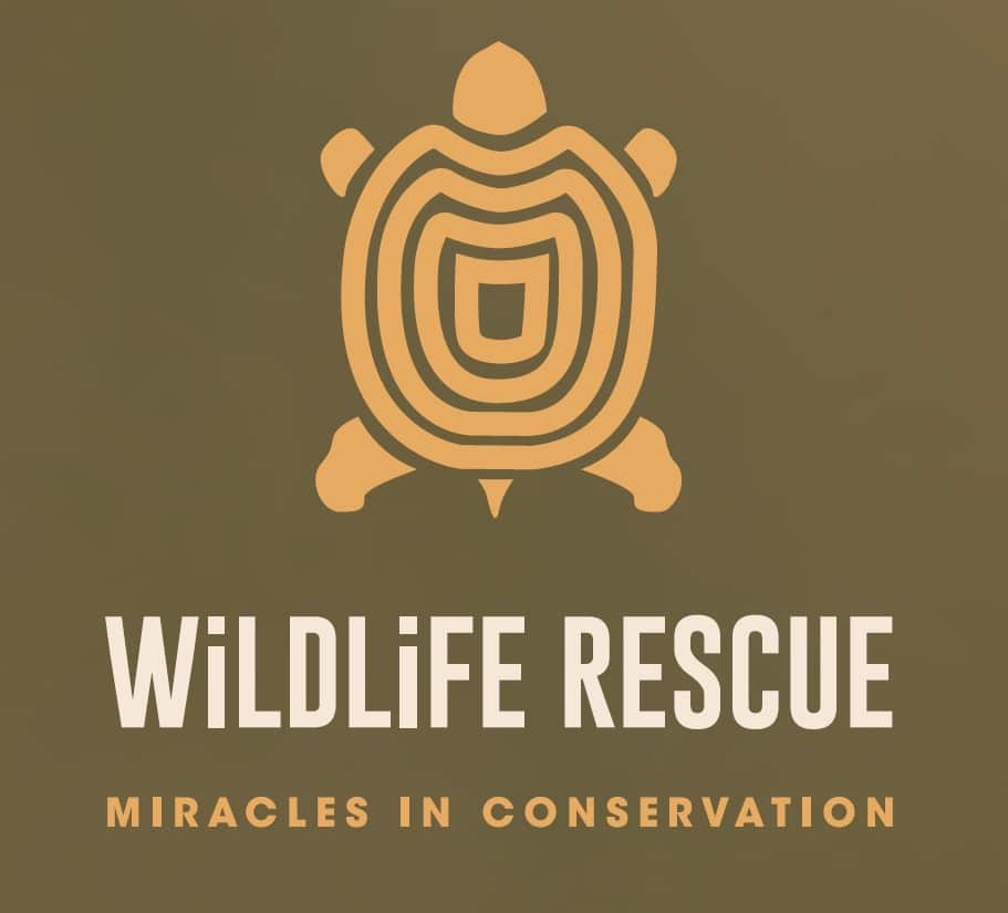 Wildlife Rescue – Miracles in Conservation