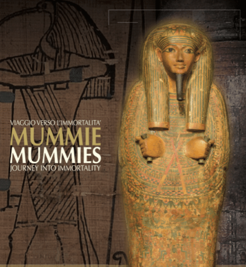 Egyptian Mummies, Journey into Immortality