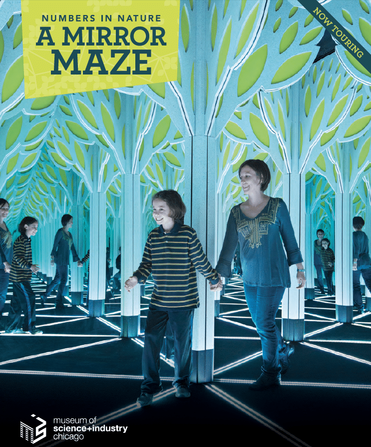 A Mirror Maze: Numbers in Nature