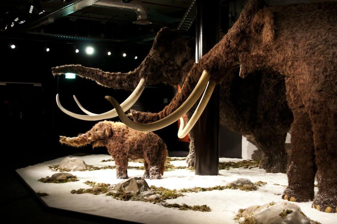 Giants of the Ice Age