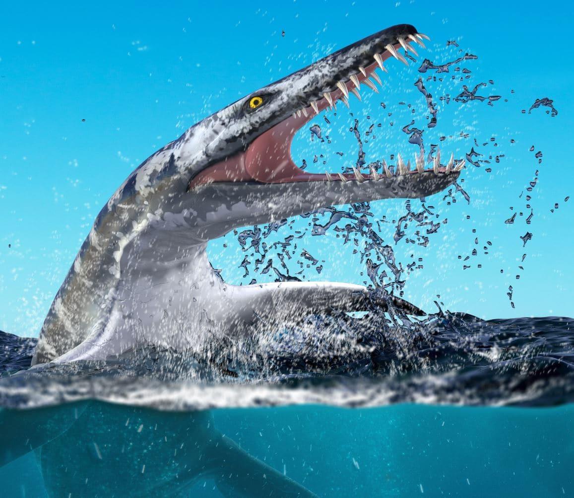 Marine Reptiles